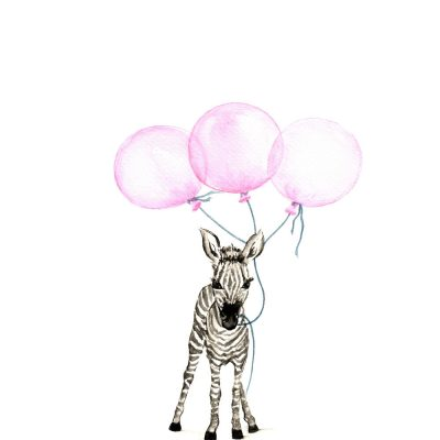 Baby Zebra with Pink Balloons - Prints for sale
