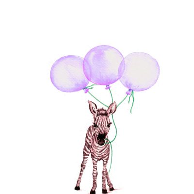 Baby Zebra with Purple Balloons - Prints for sale