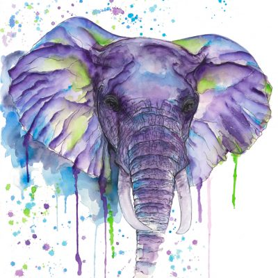 Elephant - Original Watercolours - 30 x 24 Inches (unframed)