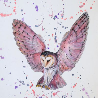 """Barn Owl in Pink"" - Original Watercolour for sale - Prints Available"