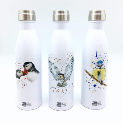 RSBB IceBottles with my designs