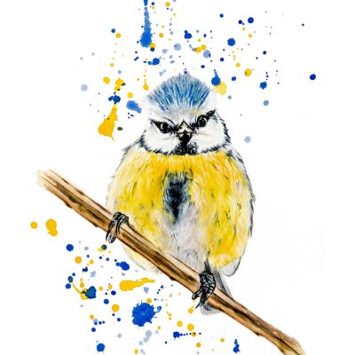 """You Looking at Me"" - Bluetit - Original Watercolour for sale - Prints available"